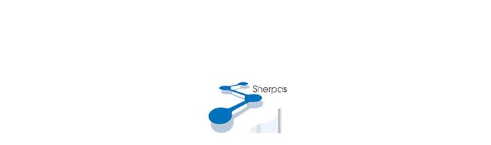 私たちはビジネスの頂点を目指す顧客とともに歩むシェルパ集団です